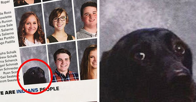 dog in high school yearbook