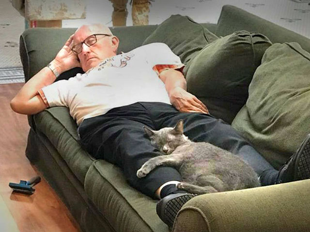grandpa cat napper