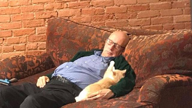 grandpa cat napper
